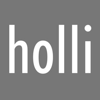 hollilogo3cm